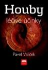 Houby a jejich léčivé účinky , Prof. Ing. Pavel Valíček, DrSc.